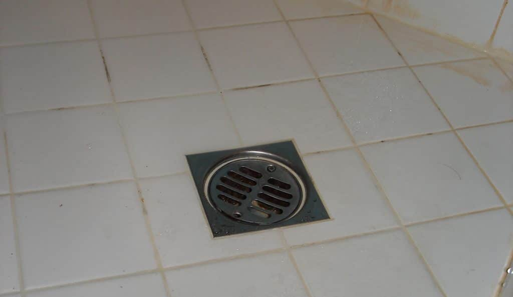 shower drain overflow