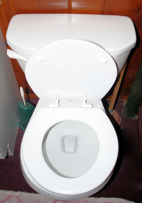 toilet with low water level
