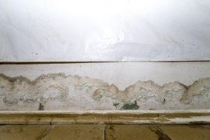 basement leak where wall meets the floor