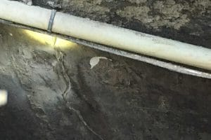 water seeping in through basement wall crack